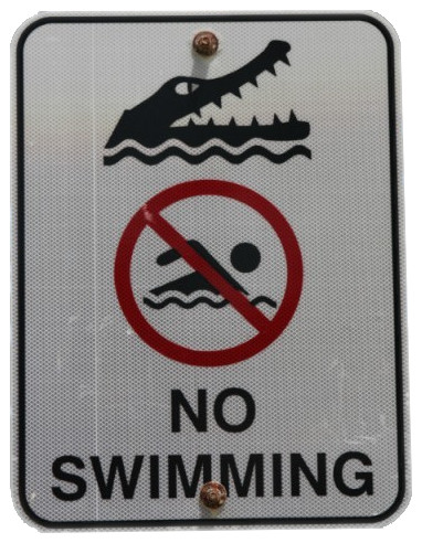no swimming crocodiles